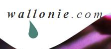 Wallon et langue wallonne